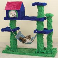 Cat beach house
